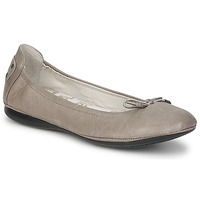 Shoes Women Ballerinas PLDM by Palladium MOMBASA CASH Grey