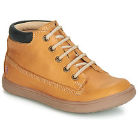 Shoes Boy High top trainers GBB NORMAN Ocre tan
