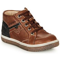 Shoes Boy High top trainers Catimini PASCOU Brown