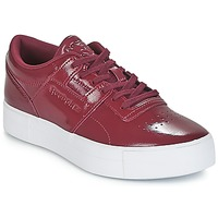 Shoes Women Low top trainers Reebok Classic WORKOUT LO FVS Bordeaux