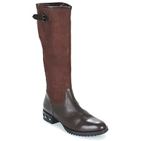 Shoes Women Boots Mam'Zelle XANE Brown