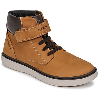 Shoes Boy High top trainers Geox J RIDDOCK BOY WPF Brown