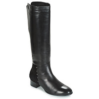 Shoes Women Boots André DORA Black