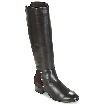 Shoes Women Boots André DORA Brown