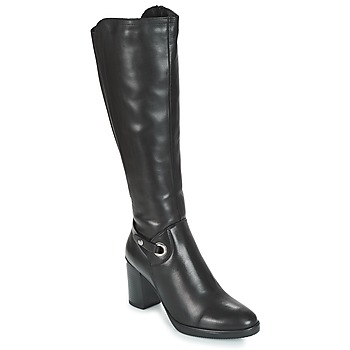 Shoes Women Boots André ALBA Black