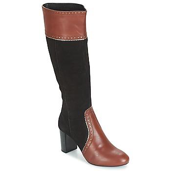 Shoes Women Boots André DOLORES Brown