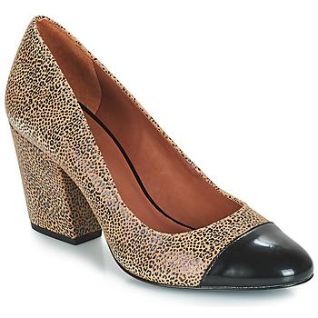 Shoes Women Court shoes André FAUVE Beige