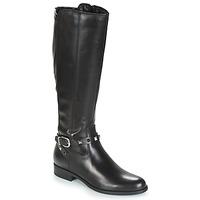 Shoes Women Boots André TESS Black