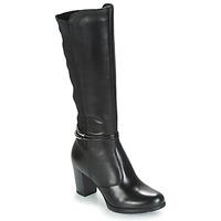 Shoes Women Boots André TANIA Black
