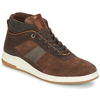 Shoes Men High top trainers André GLASGOW Brown