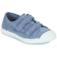 Shoes Boy Low top trainers André LITTLE SAND Blue