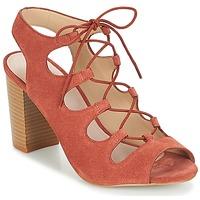 Shoes Women Sandals André LAETITIA Pink