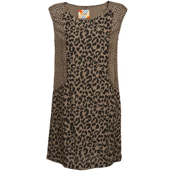 material Women Short Dresses Chipie RITA Beige