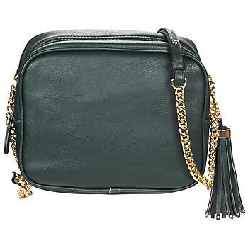 Bags Women Shoulder bags André AMBRE Green
